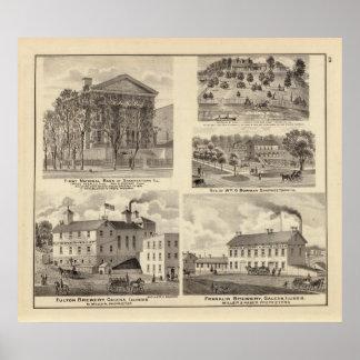 Bancos, residencias y cervecerías en Shawneetown Impresiones