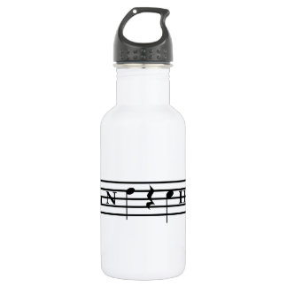 Band Chick Stainless Steel Water Bottle