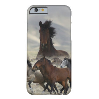 Band Of One Barely There iPhone 6 Case