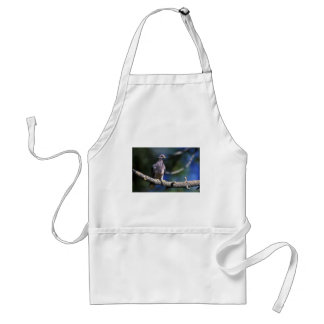Band-tailed Pigeon Adult Apron
