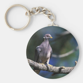 Band-tailed Pigeon Keychains