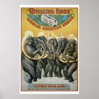 Banda de metales de los elefantes del circo poster