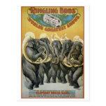 Banda de metales de los elefantes del circo postal