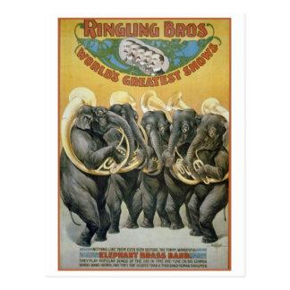 Banda de metales de los elefantes del circo tarjetas postales