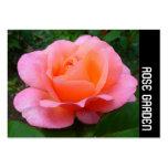 Banda lateral - color de rosa rosado plantillas de tarjeta de negocio