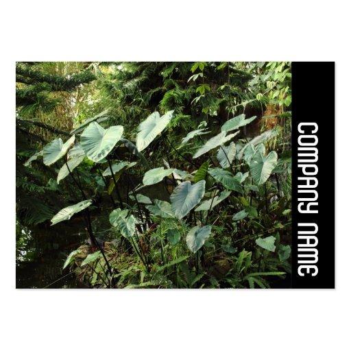 Banda lateral - jardines botánicos tarjetas de visita grandes