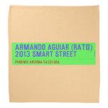 armando aguiar (Rato)  2013 smart street  Bandana