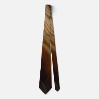 Banded Agate, Brown, Cool Nature Stone Neck Tie