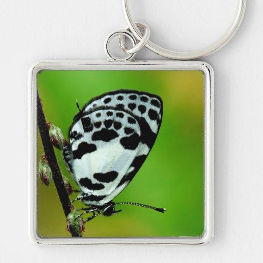 Banded Blue Pierrot Butterfly Keychain