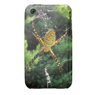 Banded Spider ~ iPhone 3 CaseMate Barely There iPhone 3 Cover