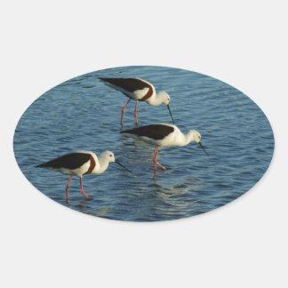 Banded Stilts Oval Sticker