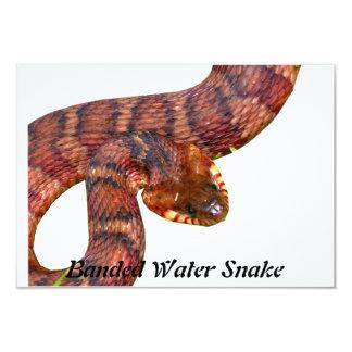 Banded Water Snake Invitation