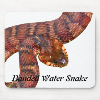 Banded Water Snake Mouse Pad