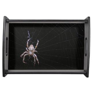 Bandeja cruzada de la porción del ~ de la araña