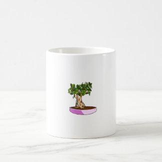 Bandeja de la púrpura de los bonsais del Ficus Taza Básica Blanca