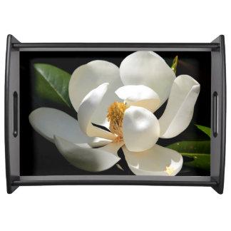 Bandeja delicada de la porción de la magnolia