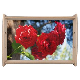 Bandeja rosas rojas