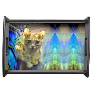 Bandeja soñadora de la porción del gato