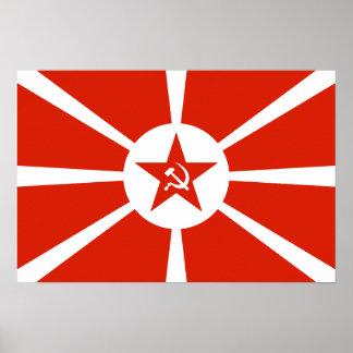Bandera 1923 de la marina de guerra póster
