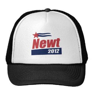 Bandera 2012 del Newt Gorras
