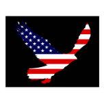 Bandera americana calva de Eagle Tarjetas Postales