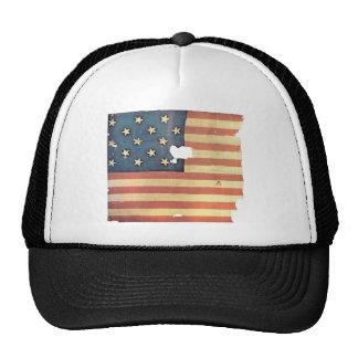 Bandera americana con 15 estrellas - la estrella S Gorros