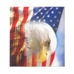 Bandera americana con Eagle calvo Blocs