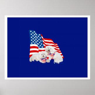 Bandera americana de Bichon Frise Impresiones