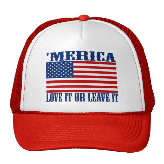 'Bandera americana de MERICA - ámela o déjele el Gorro