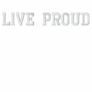 Bandera americana del arco iris del orgullo sudadera bordada con capucha