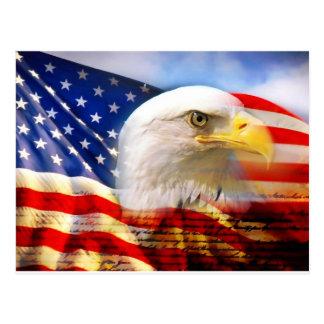 Bandera americana Eagle calvo Postal