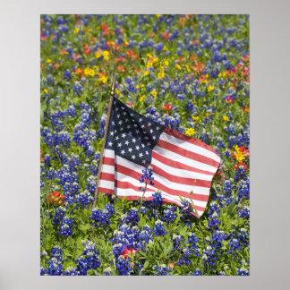 Bandera americana en el campo de capos azules, póster