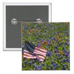 Bandera americana en el campo de los capos azules, pin