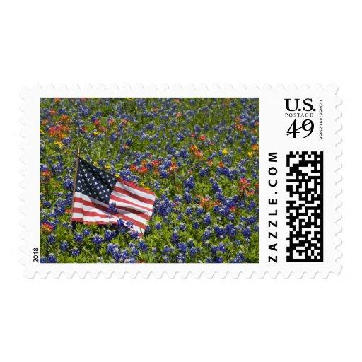 Bandera americana en el campo de los capos azules, envio