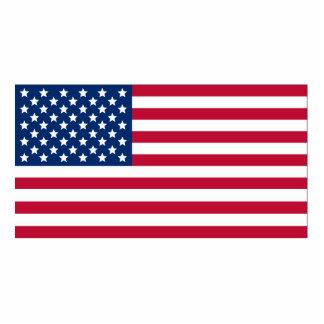 Bandera americana esculturas fotográficas