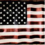 Bandera americana HFPHOT01 del vintage Pin Fotoescultura