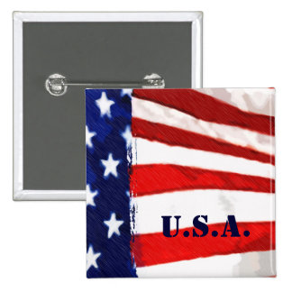 Bandera americana pins