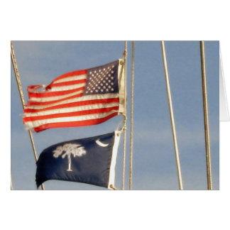 Bandera americana y bandera del Palmetto de Caroli Tarjetas