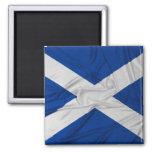 Bandera arrugada de Escocia Imán Cuadrado