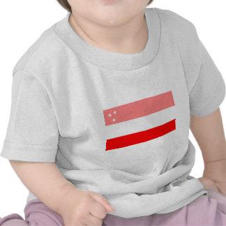 Bandera asiria histórica (antes de WWI) Camiseta