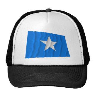 Bandera azul de Bonnie/al oeste bandera de la repú Gorro De Camionero