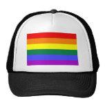 Bandera básica del arco iris gorra