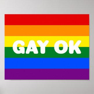 Bandera blanca grande ACEPTABLE GAY del arco iris Póster