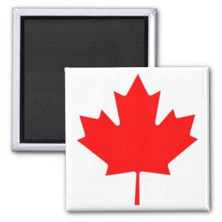 Bandera canadiense del imán rojo de la hoja de