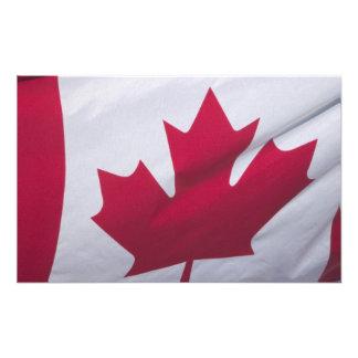 Bandera canadiense fotografía