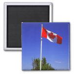 Bandera canadiense iman para frigorífico