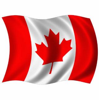 Bandera canadiense que agita fotoescultura vertical