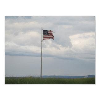Bandera Cojinete