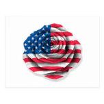 Bandera color de rosa americana en blanco postal