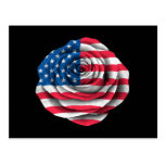Bandera color de rosa americana en negro postales
